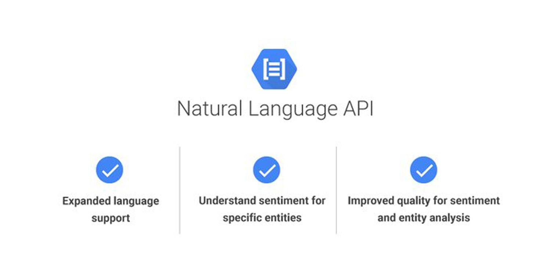 Google Cloud Natural Language Product Screenshot 4 DataEthics4All AI Society